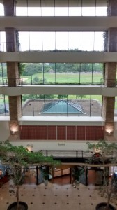 Celtic Manor Atrium Front Window