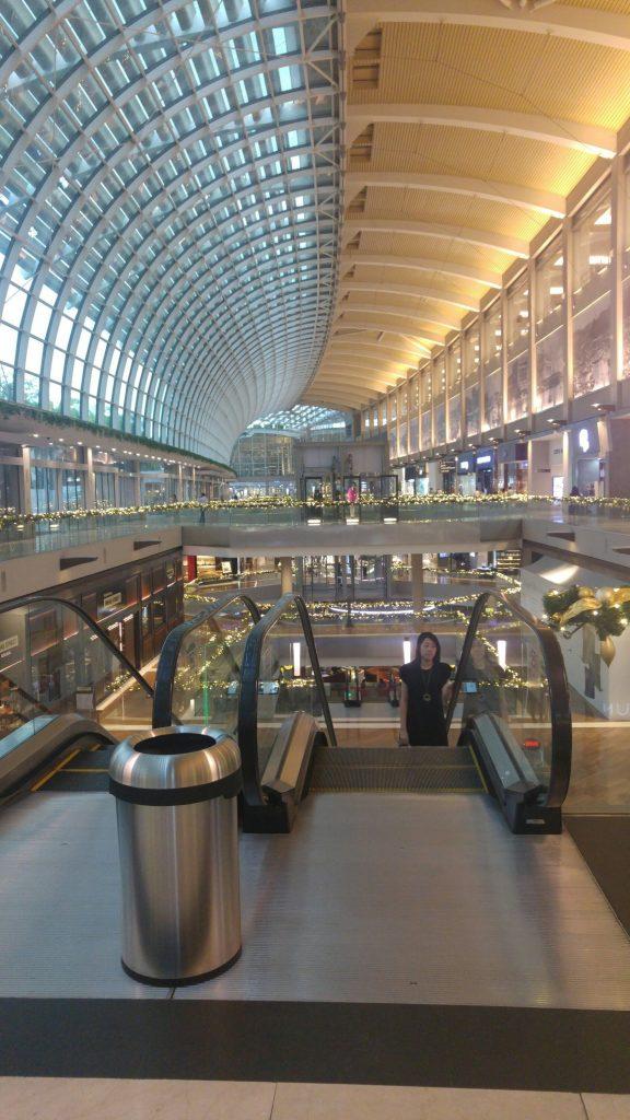 The shopping centre at Marina Bay Sands