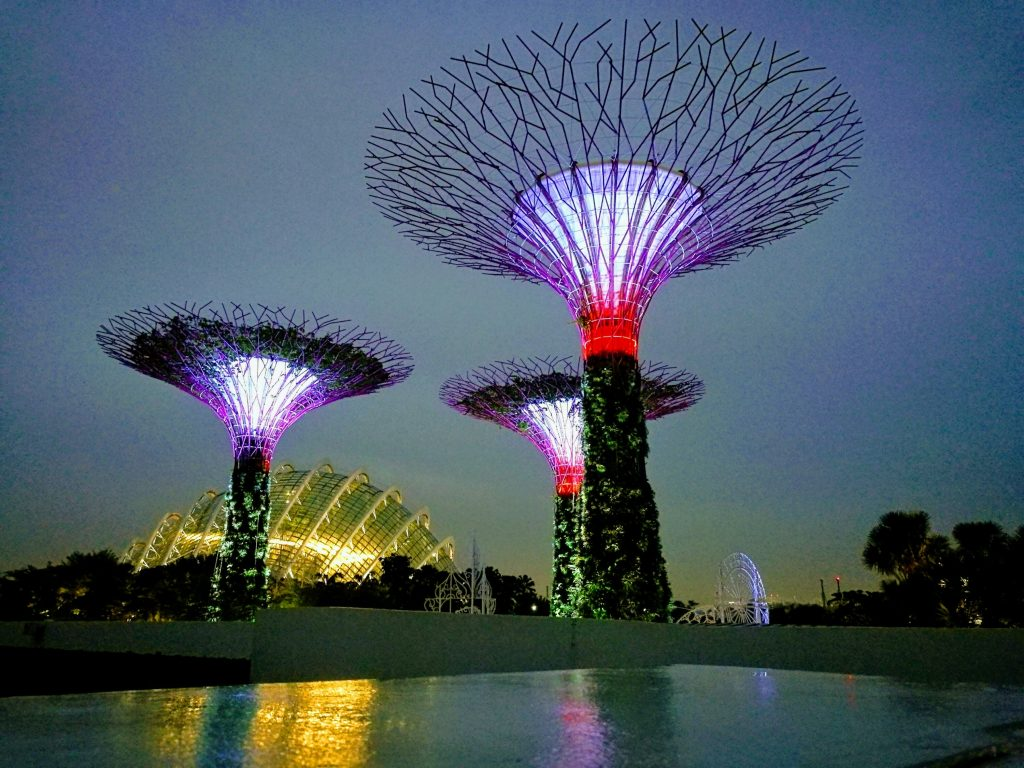 Steel Trees in Singapore