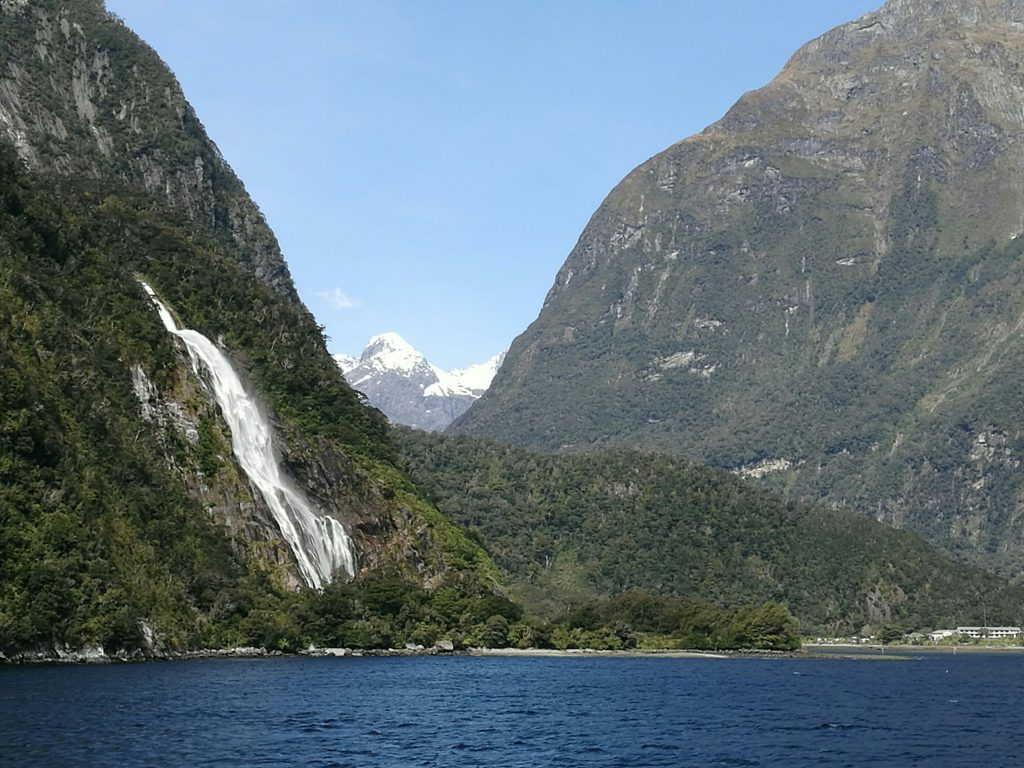 View from boat on Milford Sound